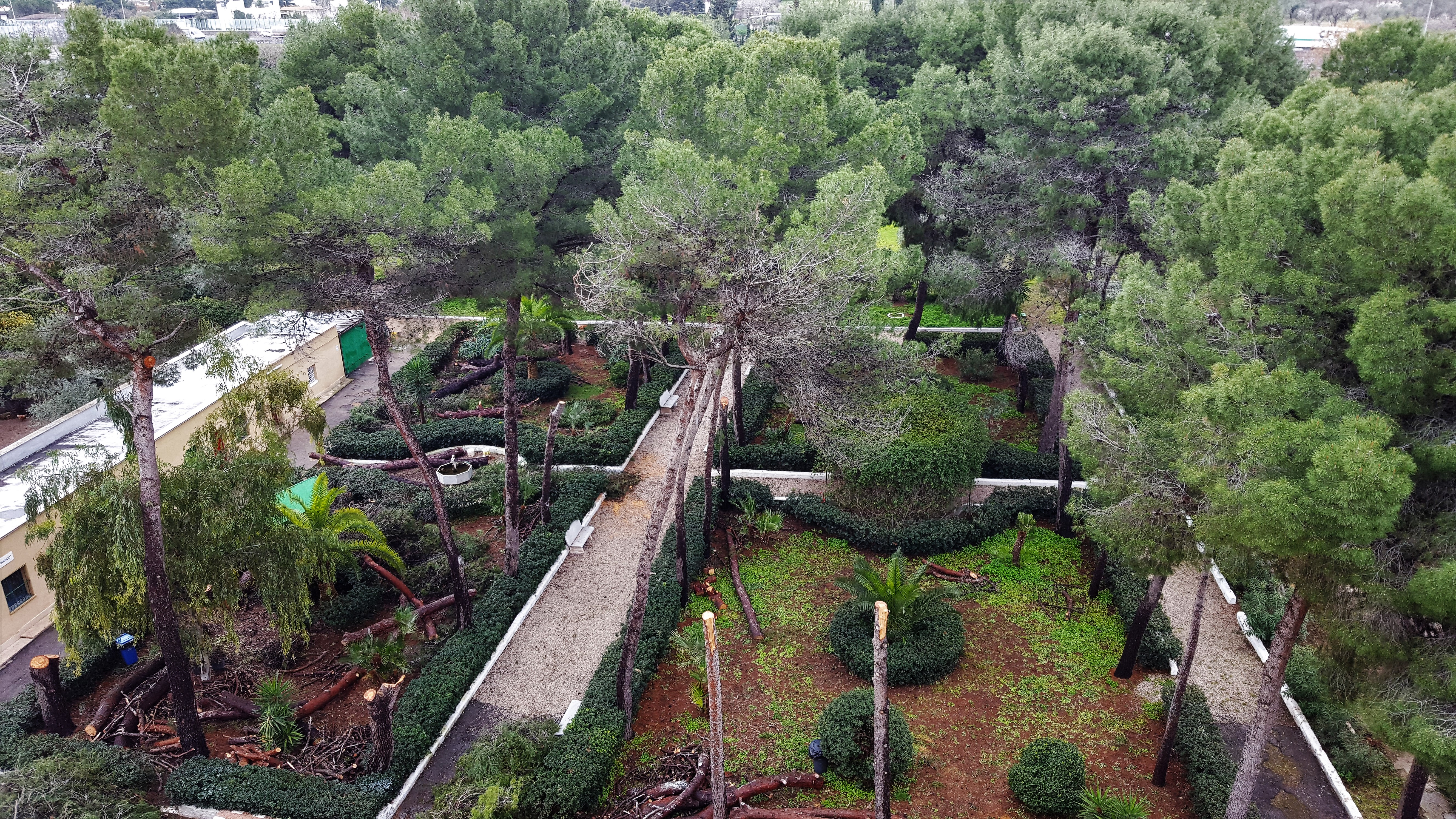 Vistadall'alto giardino